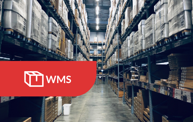 Warehouse Management System case